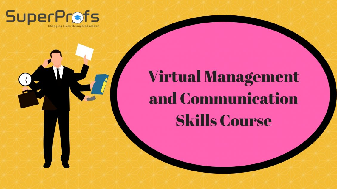 Virtual Management and Communication Skills Course for CA Final Students
